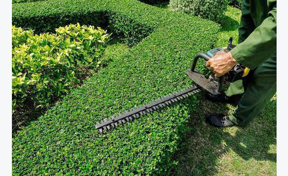 Espace vert annonce demande emploi saint martin for Emploi espace vert bourgogne