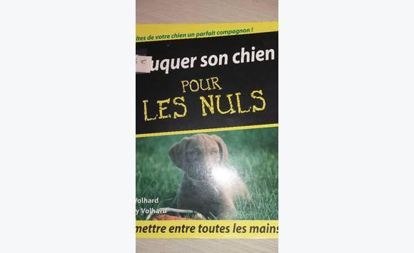 eduquer son chien pour les nuls annonce dvd cd livres saint martin cyphoma. Black Bedroom Furniture Sets. Home Design Ideas