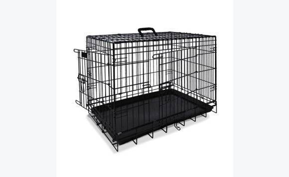 cage a chien annonce chien galisbay saint martin. Black Bedroom Furniture Sets. Home Design Ideas