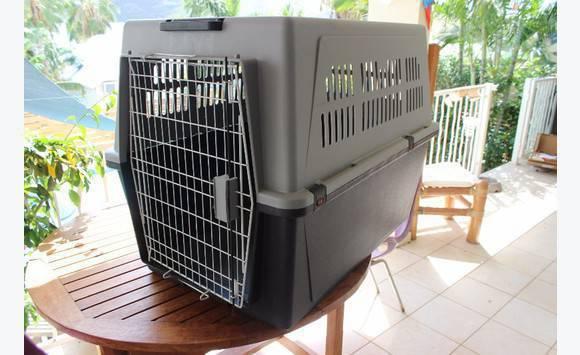 cage chien xxl annonce chien saint martin. Black Bedroom Furniture Sets. Home Design Ideas