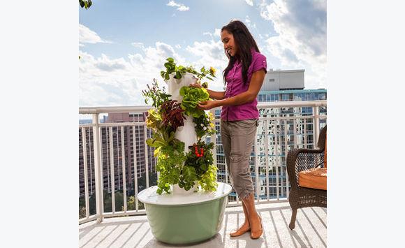 tower garden culture hydroponique bricolage jardinage saint barth lemy. Black Bedroom Furniture Sets. Home Design Ideas