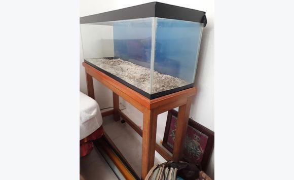 aquarium 140 litres meuble jcg97 autres animaux guadeloupe. Black Bedroom Furniture Sets. Home Design Ideas