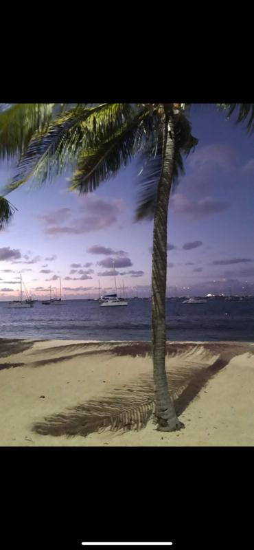 Beautiful studio direct access to beach - € 140,000 - Sales