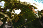 Terres Basses Plot with beach access, St. Martin